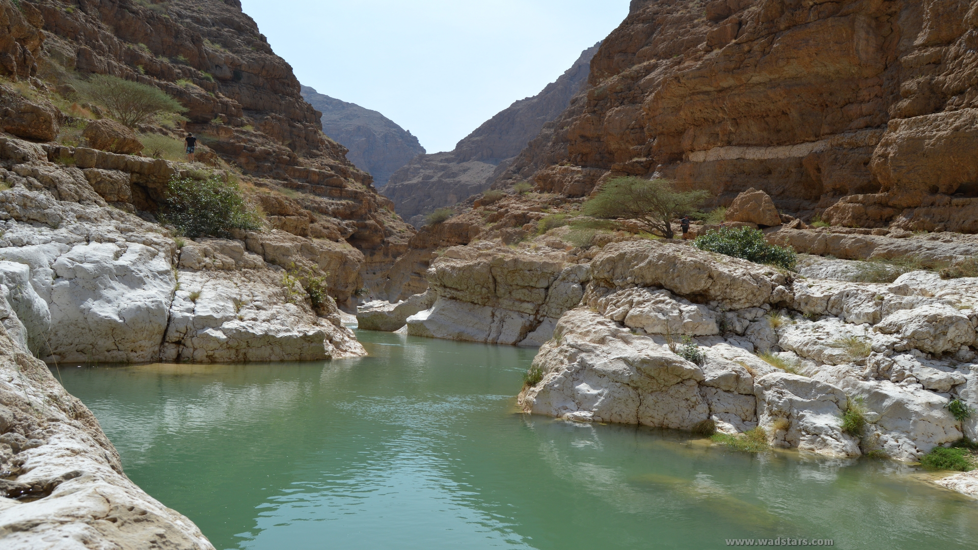 Coastal Tour Sur Quriyat with cheap price Tours from Sur Oman tours from Muscat Oman 12