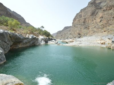 Wadi Al Arbeieen Tour from sur Oman Tours with cheap price Oman wadi Tours 80
