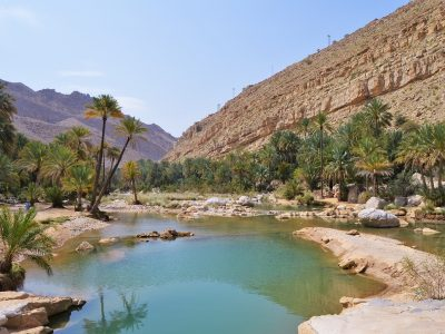 Ash Sharqiyah North Tourist components constitute an important tourist attraction for tourism in the Sultanate through the diversity of terrain and qualitative environmental and natural tourist 4